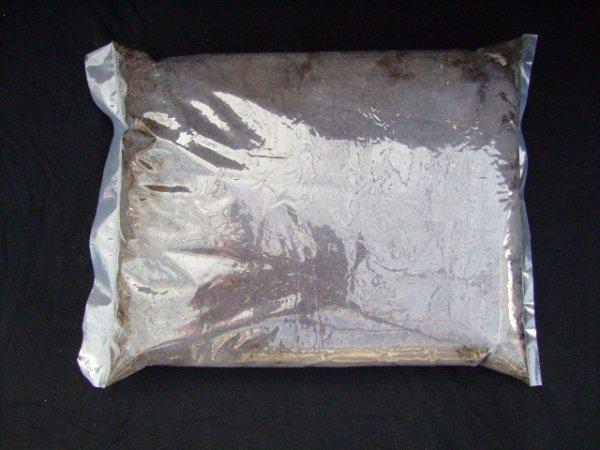 画像1: クワガタ発酵マット 10L・1袋 (1)